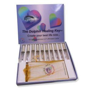 dolphin-healing-key