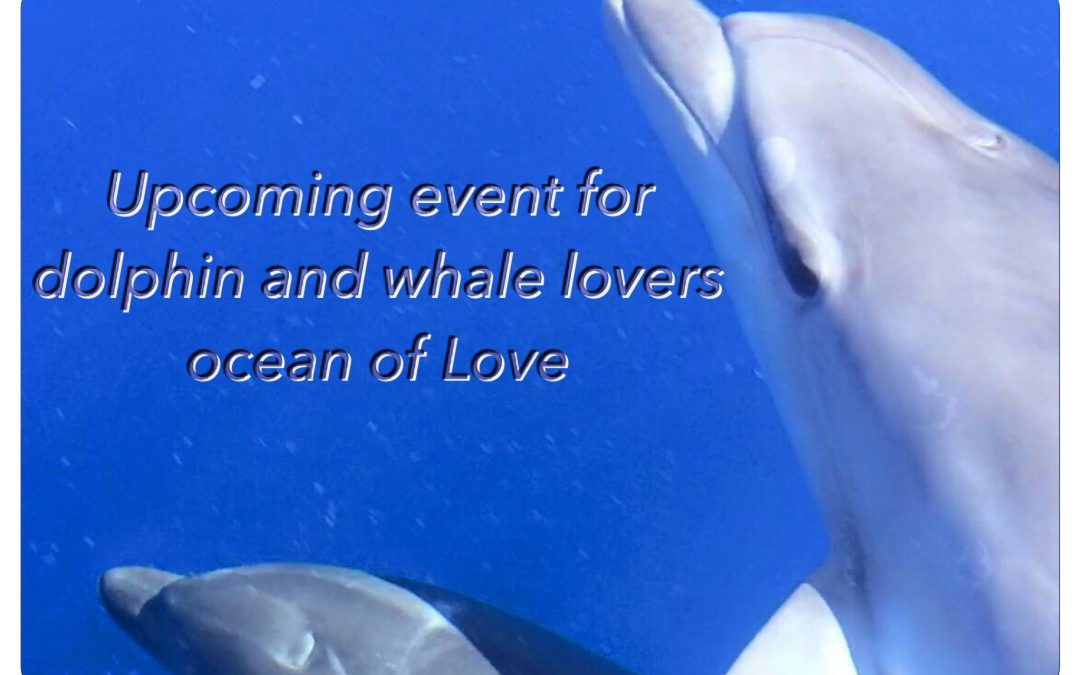 UPCOMING EVENT FOR DOLPHIN & WHALE LOVERS
